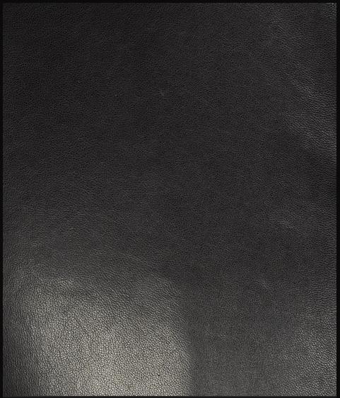 Armani Collezioni Jacket Model Leather Detail